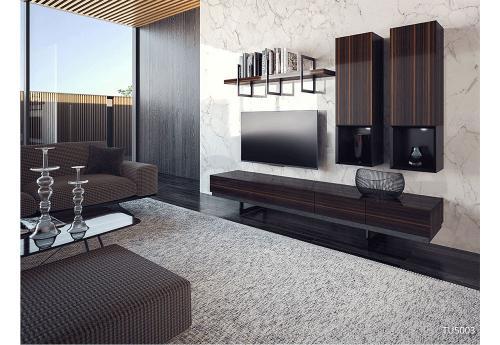 TU5003 TV Unit